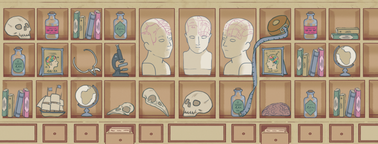 An illustrated Anatomical Cabinet